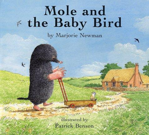 Download Mole and the baby bird