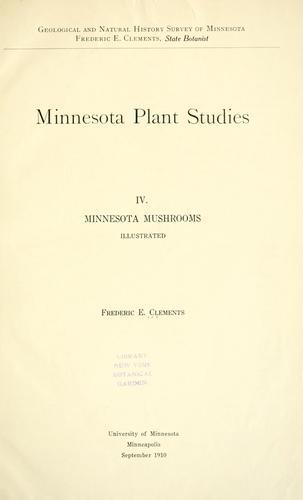 Minnesota mushrooms …