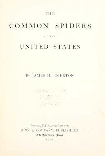 Download The common spiders of the United States.
