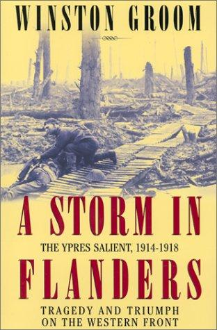 Download A storm in Flanders