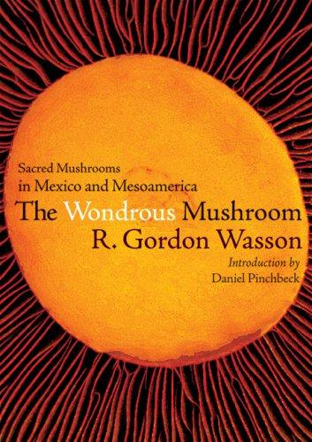 Download Wondrous Mushroom