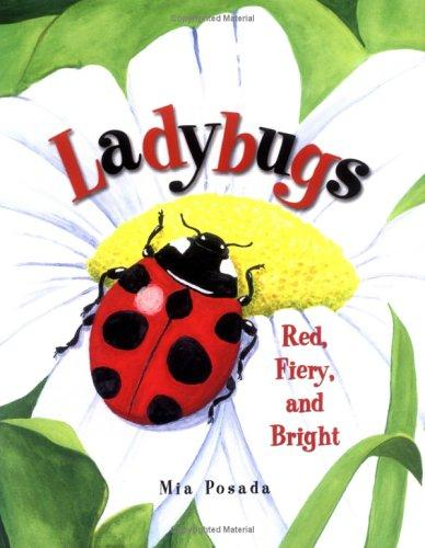 Download Ladybugs
