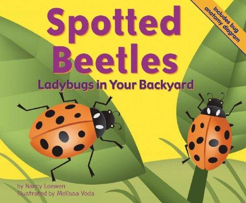 Download Spotted Beetles