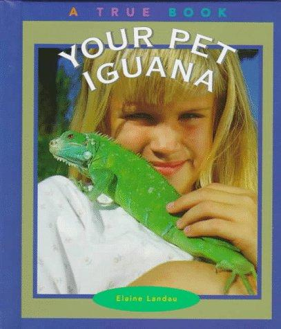 Download Your pet iguana
