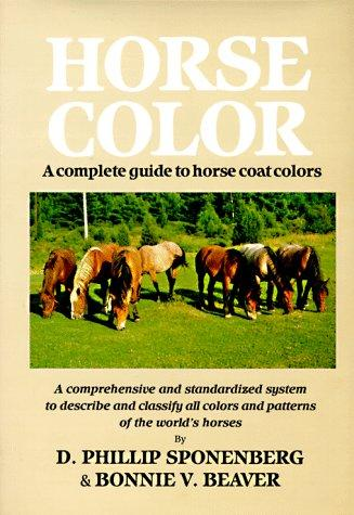 Download Horse Color