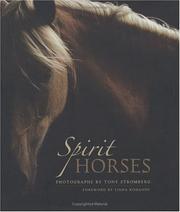 Spirit Horses [Hardcover] by Tony Stromberg and Linda Kohanov