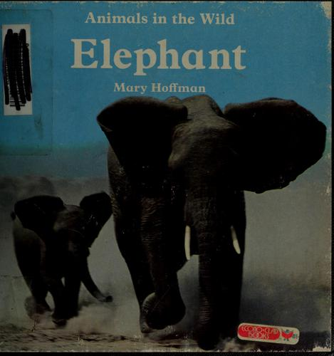 Download Elephant