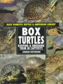 Download Box turtles