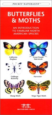 Butterflies & Moths of North America by James Kavanagh