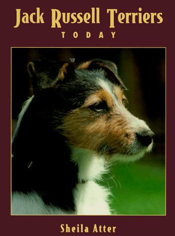 Jack Russell terriers today by Sheila Atter