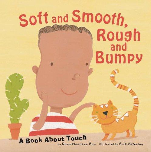 Soft And Smooth, Rough And Bumpy by Dana Meachen Rau