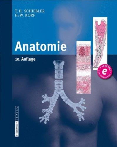 Anatomie by